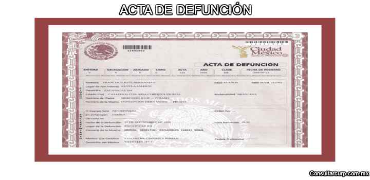 requisitos cursar baja CURP